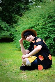 Cosplay-Cover: Monkey D. Luffy [Dressrosa]