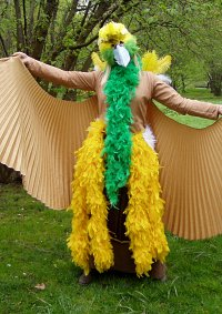 Cosplay-Cover: Lesser Bird of Paradise