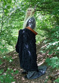 Cosplay-Cover: Thranduil Oropherion