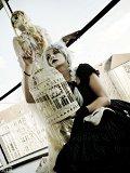 Top-3-Foto - von Suzu-chan