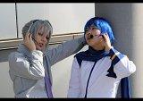 Top-3-Foto - von Dragonfruit_Hatori