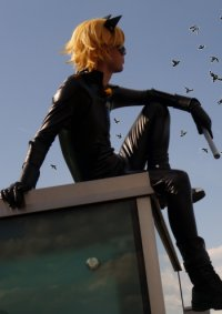 Cosplay-Cover: Chat Noir