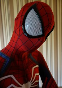 Cosplay-Cover: Peter Parker Spiderman