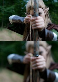 Cosplay-Cover: Legolas Thranduilion ➤ Fellowship of the Ring