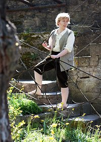 Cosplay-Cover: Samwise Gamgee