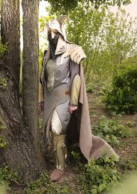 Cosplay-Cover: Mirkwood Palace Guard