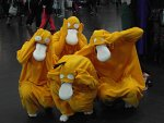 Cosplay-Cover: Enton - Psyduck