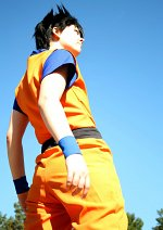 Cosplay-Cover: Son Goku / Kakarott