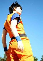 Cosplay-Cover: Son Goku / Kakarott