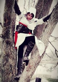 Cosplay-Cover: altair