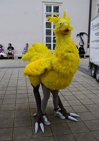 Cosplay-Cover: Chocobo