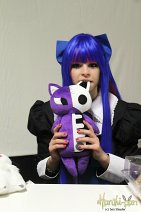 Cosplay-Cover: Anarchy Stocking ~Basic~
