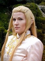 Cosplay-Cover: Glorfindel
