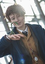 Cosplay-Cover: Newt A. F. Scamander