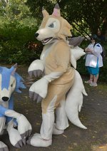 Cosplay-Cover: Lycanroc Day