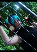 Cosplay-Cover: Hatsune ◘ Mikuo [Magnet]