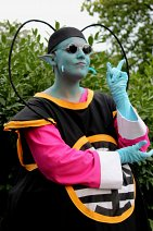 Cosplay-Cover: Meister Kaio