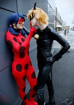 Cosplay-Cover: Chat Noir / Cat Noir