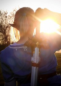Cosplay-Cover: Link (The Legend of Zelda: Breath of the Wild)