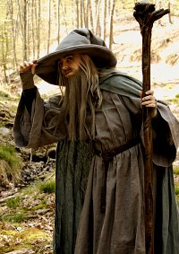 Cosplay-Cover: Gandalf the Grey