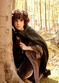 Cosplay-Cover: Frodo Baggins [The Fellowship Of The Ring]
