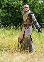 Cosplay-Cover: Geralt von Riva (Meisterliche Bärenrüstung)