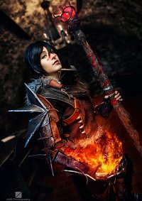 Cosplay-Cover: Hawke [Champion Armor]