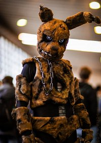 Cosplay-Cover: Springtrap