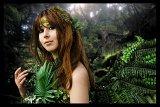Top-3-Foto - von Rena
