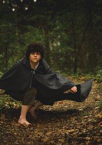 Cosplay-Cover: Frodo Baggins (Beutlin)