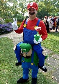 Cosplay-Cover: Mario und Luigi
