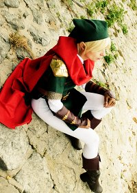 Cosplay-Cover: Link (Knight of Hylia)