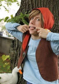 Cosplay-Cover: Nils Holgersson